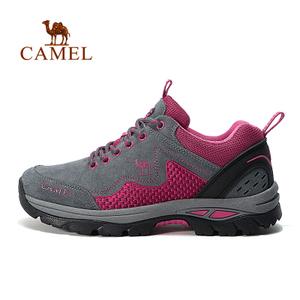 Camel/骆驼 A63303660