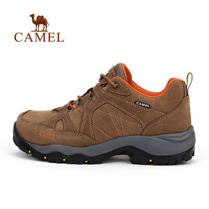 Camel/骆驼 A632026715