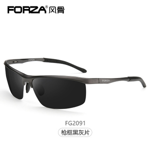 Forza/风骨 2091