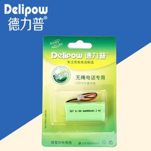 Delipow/德力普 NI-MH-AAA-800MAH-2.4V