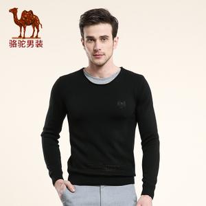 Camel/骆驼 X6H256058