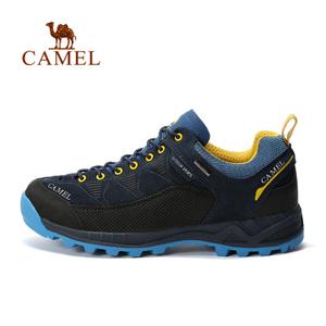 Camel/骆驼 A632026685