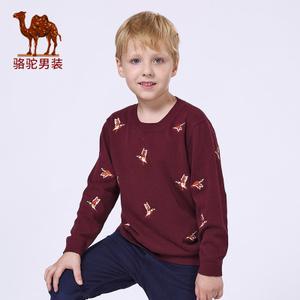 Camel/骆驼 T5H267263