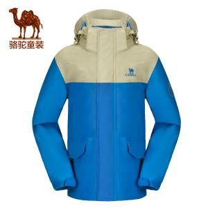 Camel/骆驼 A6W51K801