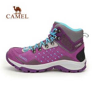 Camel/骆驼 A63149619