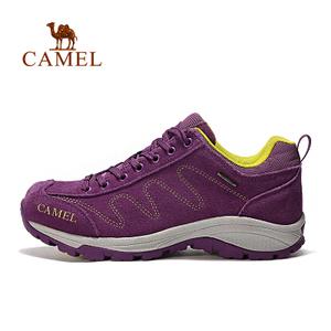 Camel/骆驼 A63149614