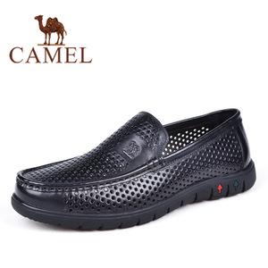 Camel/骆驼 2155256