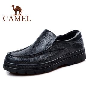 Camel/骆驼 2118081
