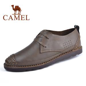 Camel/骆驼 2155165