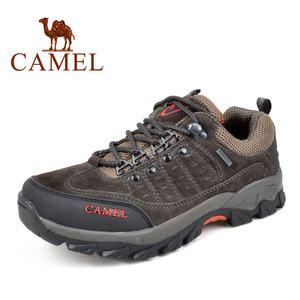 Camel/骆驼 2330068