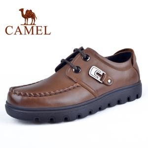 Camel/骆驼 2064039