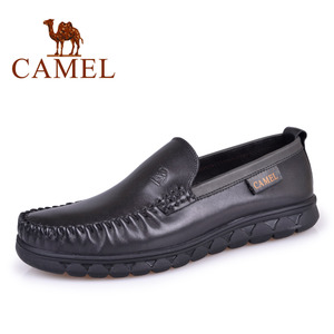 Camel/骆驼 2155145