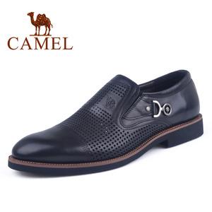 Camel/骆驼 2118034