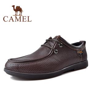 Camel/骆驼 2155343