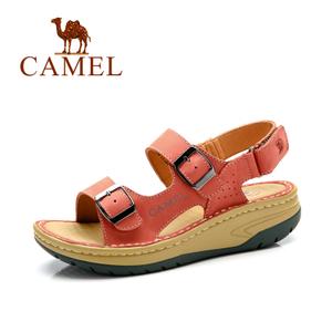 Camel/骆驼 A61326606