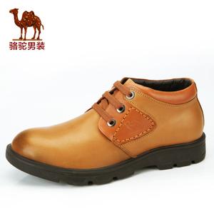 Camel/骆驼 2155136