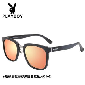 PB-23024-C1-2