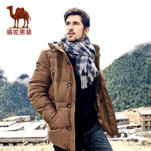 Camel/骆驼 DY4105072