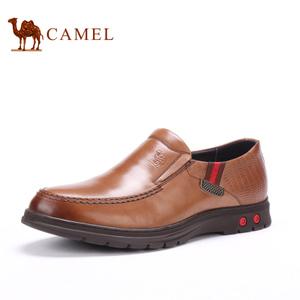 Camel/骆驼 253005360