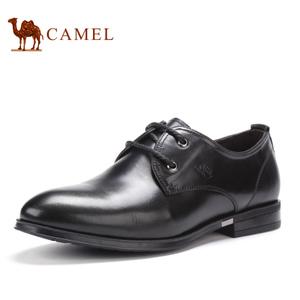 Camel/骆驼 2155303