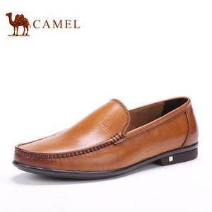 Camel/骆驼 2155308