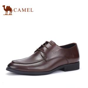 Camel/骆驼 2065036