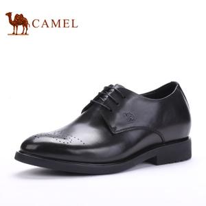 Camel/骆驼 253029147