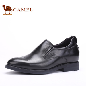Camel/骆驼 253029148