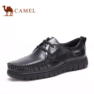 Camel/骆驼 2155216