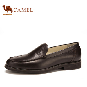 Camel/骆驼 2085023