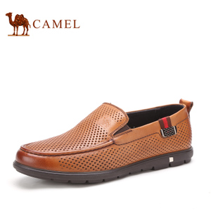 Camel/骆驼 2155346