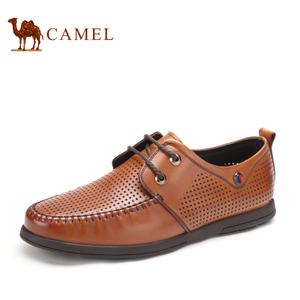 Camel/骆驼 2155338