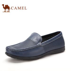 Camel/骆驼 2155360