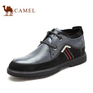 Camel/骆驼 2064067