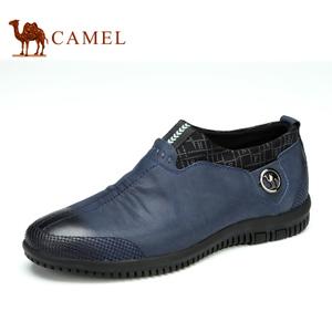 Camel/骆驼 2087038