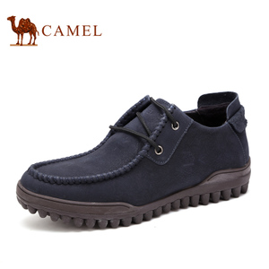 Camel/骆驼 2087023