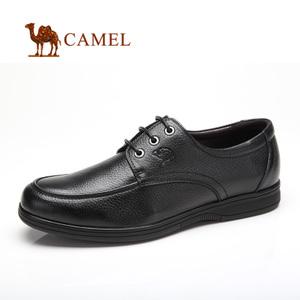 Camel/骆驼 2118026