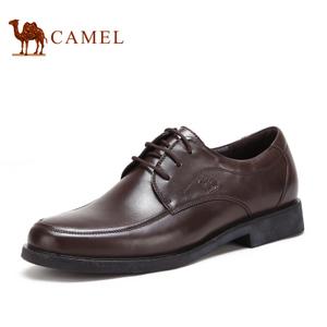 Camel/骆驼 2118045