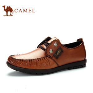 Camel/骆驼 2155247