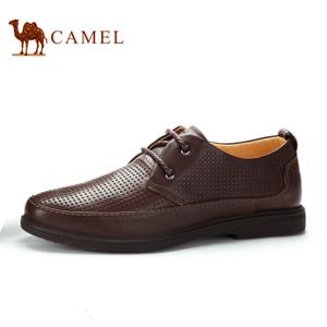 Camel/骆驼 2136017