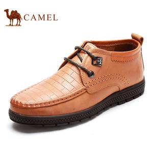 Camel/骆驼 2064054
