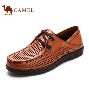 Camel/骆驼 2155265