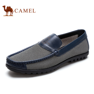 Camel/骆驼 2155264