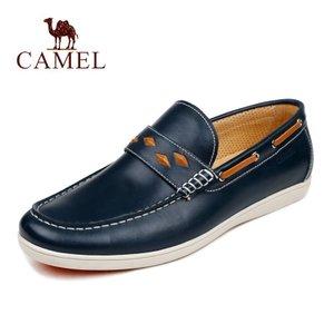 Camel/骆驼 2068023