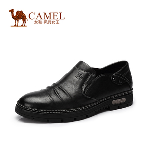 Camel/骆驼 2064063