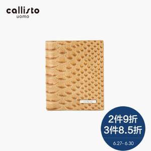 CALLISTO FHCPE032KA