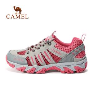 Camel/骆驼 A71303687
