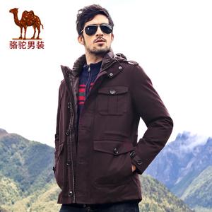 Camel/骆驼 Y4176071