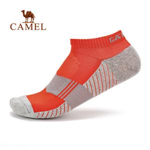 Camel/骆驼 A7S3B3136