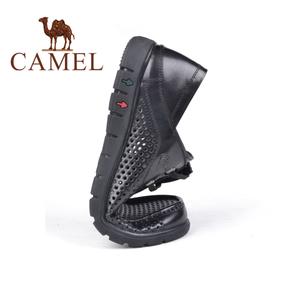 Camel/骆驼 2155257